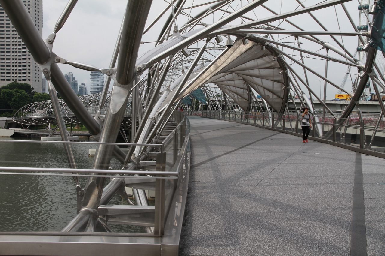 Bridge that owes its shape to the DNA
