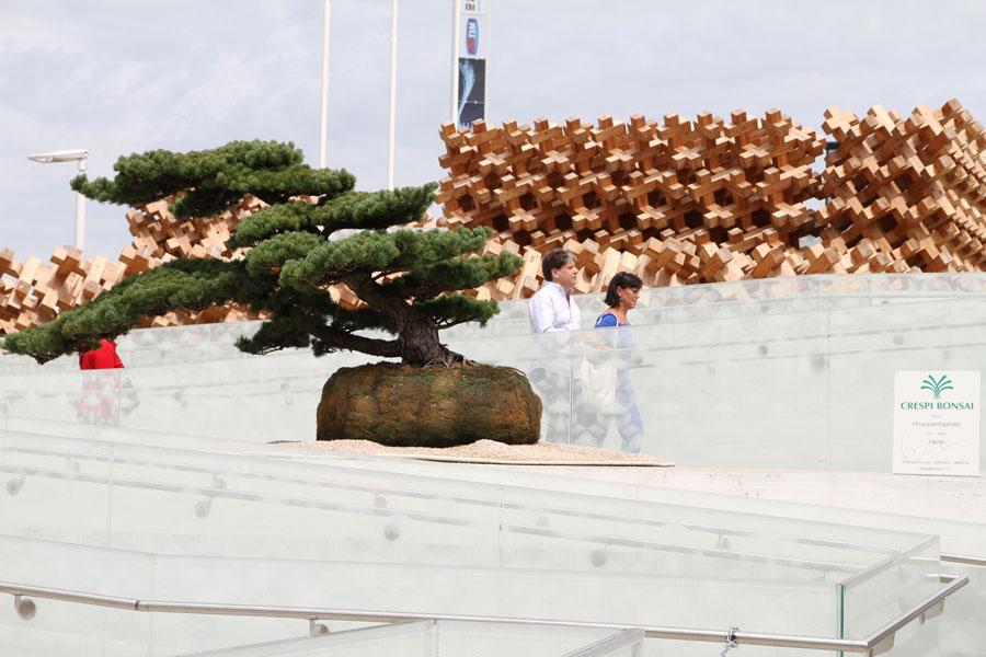 EXPO Japan Pavilion (5)